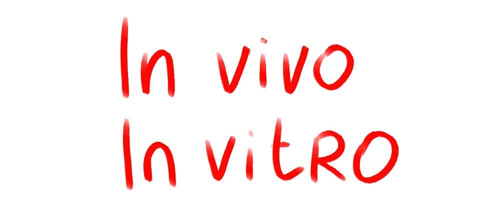 in vivo vitro laboratory
