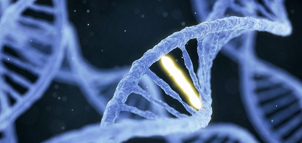 DNA nitrogenous base mutation cancer cell